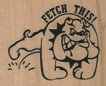 Fetch This 2 1/2 x 2-0