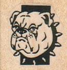 BullDog With Spiked Collar 1 x 1-0