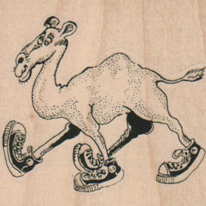 Camel in Sneakers 3 x 2 1/2-0