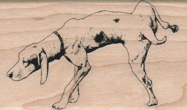 Pointer Dog Lifting Leg 2 x 3 1/4-0