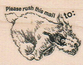 Please Rush This Mail 1 3/4 x 2-0