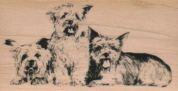 Dog Trio 2 1/4 x 4 1/4-0