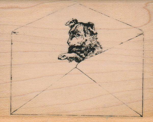 Dog In Envelope 2 1/2 x 3-0