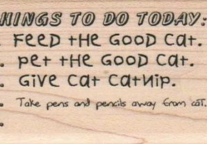 Things To Do Today/Cat 1 3/4 x 3-0