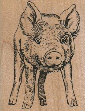 Pigface 2 x 2 1/2-0