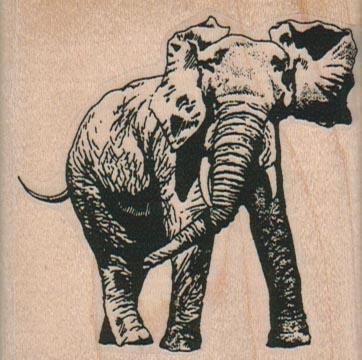 Elephant Side 2 1/2 x 2 1/2-0