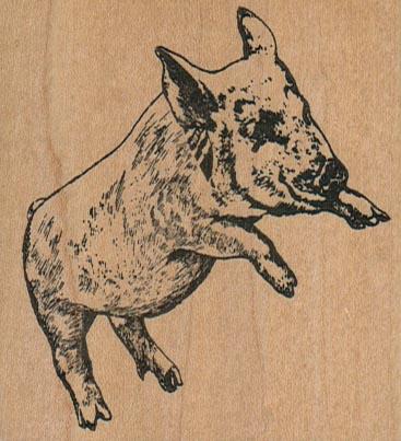 Pig 2 3/4 x 2-0