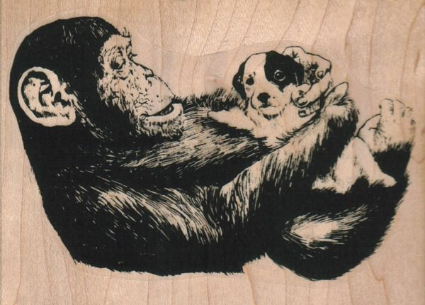 Monkey And Pup 3 3/4 x 2 3/4-0