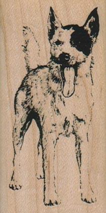 Dog Tongue 1 1/2 x 3-0