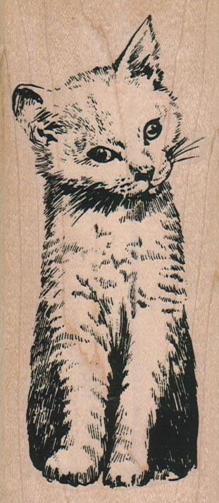 Cat Inquisitive/Large 2 1/4 x 4 3/4-0