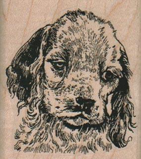 Pensive Dog 2 x 2 1/4-0