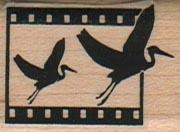 Crane Film Strip 1 x 1 1/4-0