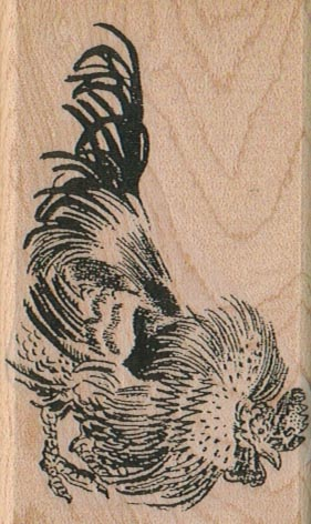 Rooster 2 x 3 1/4-0