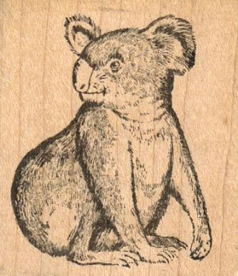 Koala Looking Backwards 2 x 2 1/4-0