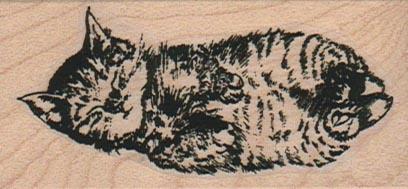 Kitty Sleeping 1 1/2 x 2 3/4-0
