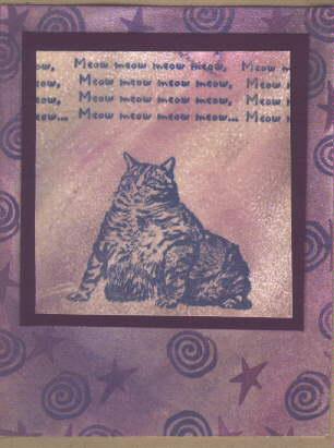 Fat Cat 2 1/2 x 2-35224