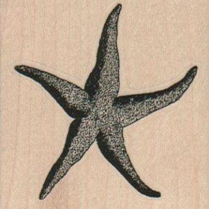 Fat StarFish 2 1/4 x 2 1/4-0