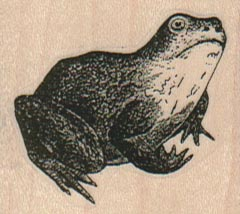 Frog/Toad 1 3/4 x 1 1/2-0