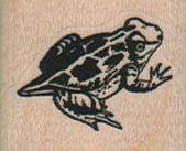 Frog 1 1/4 x 1
