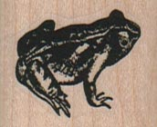 Frog Looking Up 1 1/4 x 1