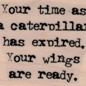 Your Time As A Caterpillar 1 3/4 x 2-0
