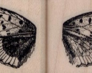 Pair of Butterfly Wings 1 1/4 x 1 1/4 each-0