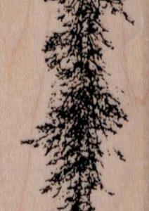 Skinny Fir Tree 1 1/4 x 4 1/2-0
