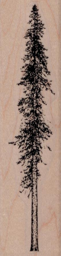 Skinny Fir Tree 1 1/4 x 4 1/2
