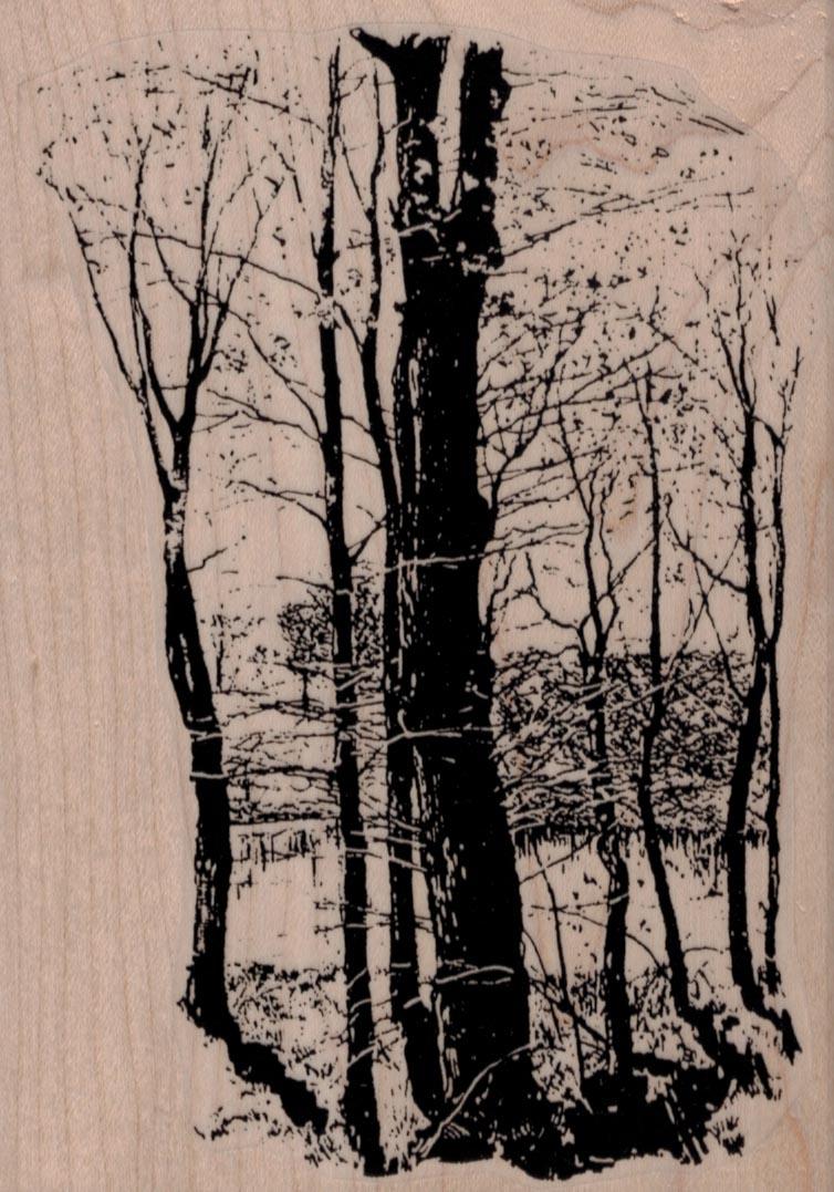 Winter Woods Scene 4 x 5 1/2