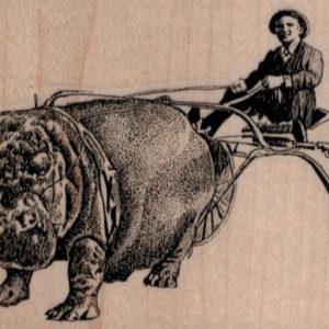 Hippo Racer 3 1/2 x 2 1/2-0