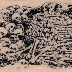 Pile of Bones and Skulls 2 1/2 x 4 1/2-0