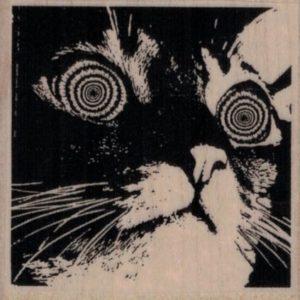 Hypnotic Cat 2 1/4 x 2 1/4-0
