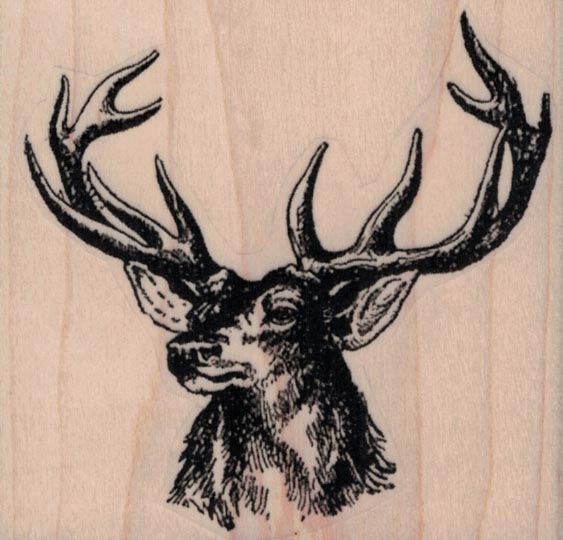 Deer Head by Cat Kerr 3 x 2 3/4