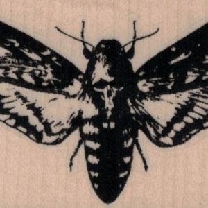 Deathhead Moth 3 x 1 3/4-0