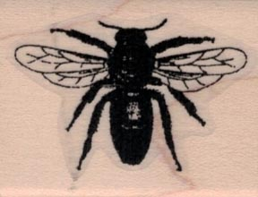 Bee Silhouette by Cat Kerr 1 1/4 x 1 1/2-0