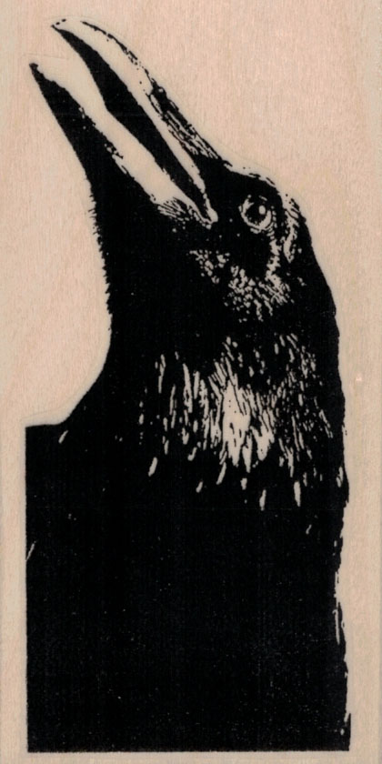 Raven Looking Up 2 1/4 x 4 1/4