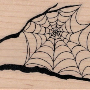 Spider Web In Tree Branches 2 1/2 x 4 3/4-0