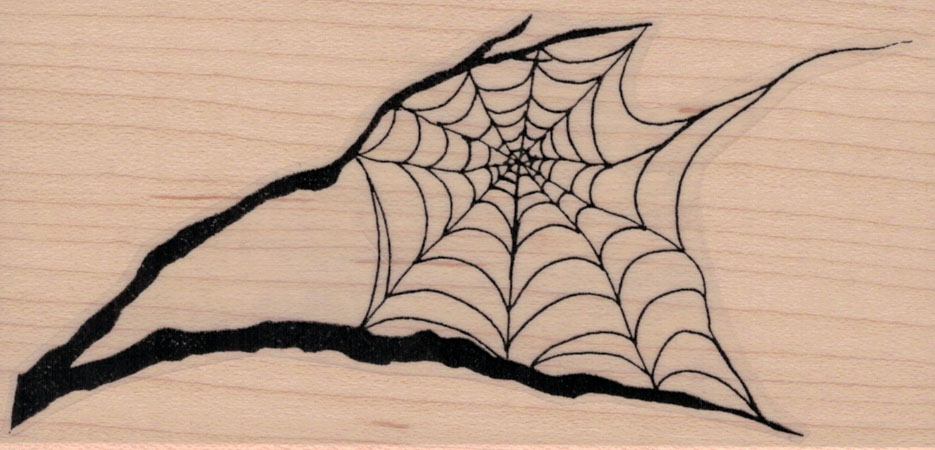 Spider Web In Tree Branches 2 1/2 x 4 3/4