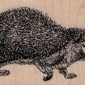 Hedgehog 2 1/2 x 1 3/4-0