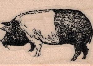 Essex Pig 1 1/4 x 1 3/4-0