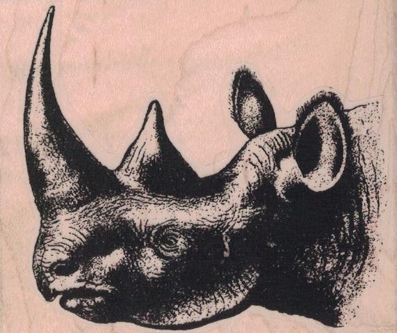 Rhinoceros Head 3 x 2 1/2