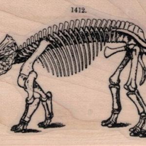Triceratops Skeleton 2 x 3 1/2-0